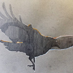 Flying in... Graphite and pastel on toned paper