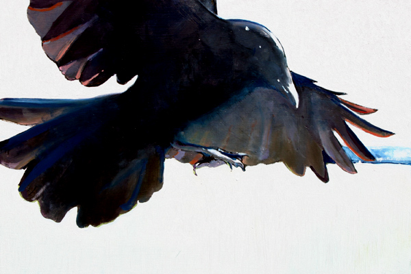 Crow Study, 12 x 18, oil on panel